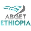ABGET GENERAL TRADING