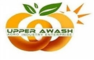 Upper Awash Agro Industry Enterprise