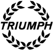 TRIUMPH BUSINESS P.L.C