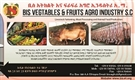 BIS VEGETABLE & FRUITS AGRO-INDUSTRY S.C.